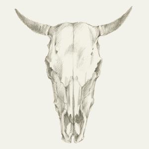 Western Skull Mount I by Ethan Harper