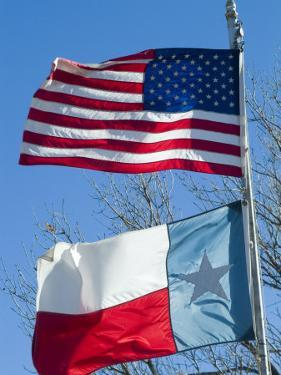 American and Texan Flags, Texas, USA by Ethel Davies