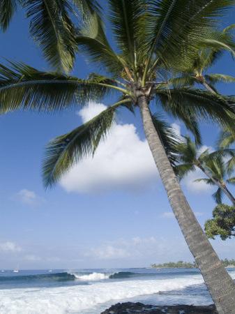 Beach at Kailua-Kona, Island of Hawaii (Big Island), Hawaii, USA by Ethel Davies