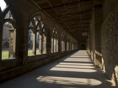Cloisters, Durham Cathedral, Unesco World Heritage Site, Durham, County Durham, England by Ethel Davies