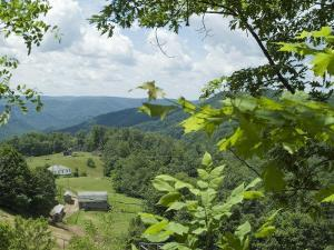 Countryside, West Virginia, USA by Ethel Davies
