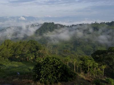 El Caney Plantation and View over Coffee Crops Towards the Andes Mountains, Near Manizales by Ethel Davies