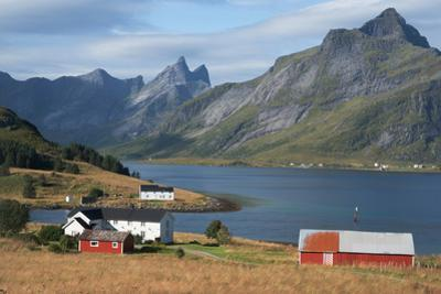 Farmhouses in the country, Lofoten Islands, Nordland, Norway, Scandinavia, Europe by Ethel Davies