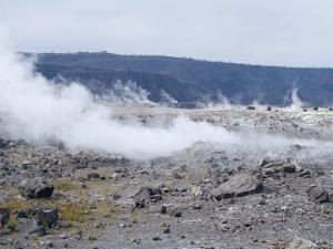 Kilauea Thermal Area, Hawaii Volcanoes National Park, Unesco World Heritage Site, Hawaii by Ethel Davies