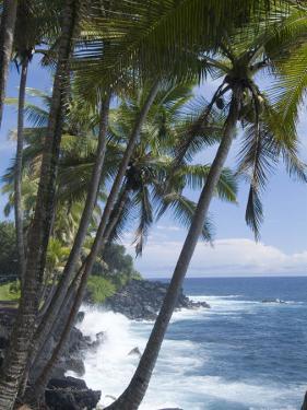 Puna (Black Sand) Beach, Island of Hawaii (Big Island), Hawaii, USA by Ethel Davies