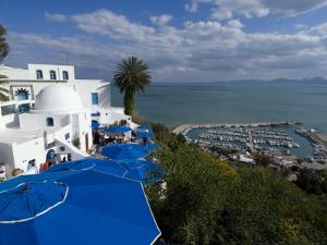 Sidi Bou Said, Near Tunis, Tunisia, North Africa, Africa by Ethel Davies