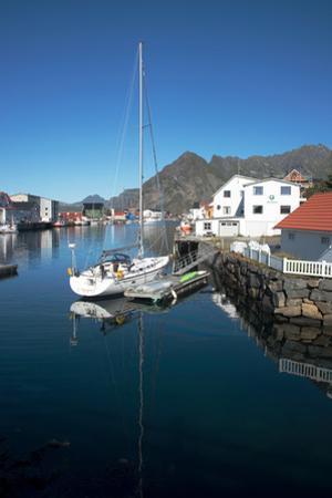 View of Henningsvaer Harbour, Lofoten Islands, Nordland, Norway, Scandinavia, Europe by Ethel Davies