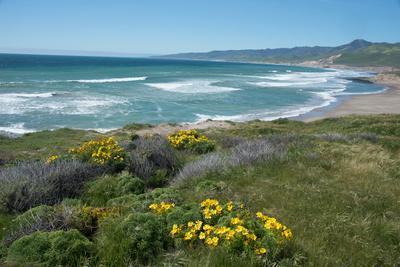 View of Jalama Beach County Park, Near Lompoc, California, United States of America, North America