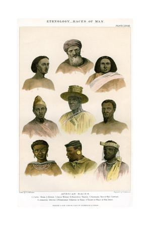 Ethnology, Races of Man, 1800-1900
