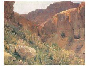 Ain Djiddy Gorge near the Dead Sea by Eugen Bracht