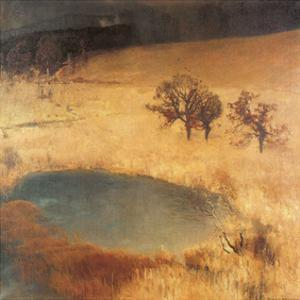 Eugen bracht posters for sale at for Pond reeds for sale