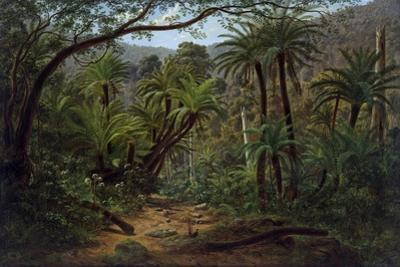 Ferntree Gully in the Dandenong Ranges, 1857 by Eugen von Guerard