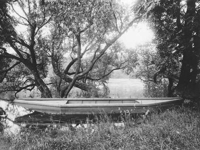 Rowing Boat on the Pond in Ville d' Avray