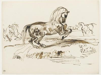 Cheval cabré dans un paysage et autres études de chevaux
