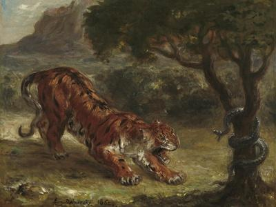 Tiger and Snake, 1862