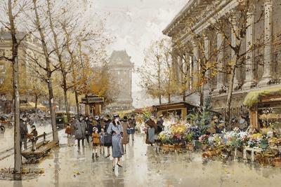 Paris Street in Autumn