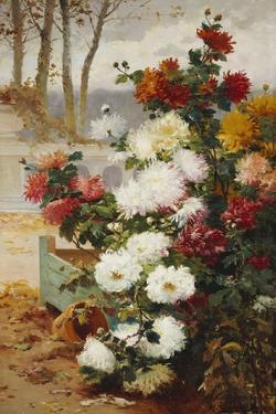 Chrysanthemums in a Walled Garden by Eugene Henri Cauchois