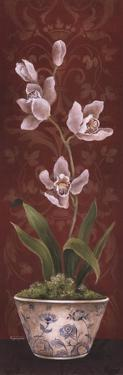 Organic Orchids I by Eugene Tava