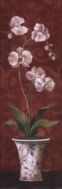 Organic Orchids II by Eugene Tava