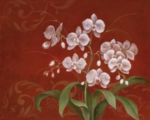 Say it with Orchids II by Eugene Tava