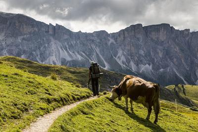 https://imgc.allpostersimages.com/img/posters/europe-italy-alps-dolomites-mountains-south-tyrol-val-gardena-view-from-seceda_u-L-Q1EXGXQ0.jpg?artPerspective=n