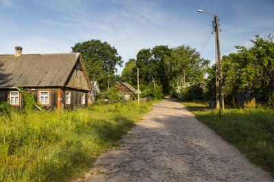 https://imgc.allpostersimages.com/img/posters/europe-poland-podlaskie-voivodeship-knyszynska-forest_u-L-Q1EXFF20.jpg?artPerspective=n