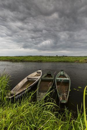 https://imgc.allpostersimages.com/img/posters/europe-poland-podlaskie-voivodeship-narew-national-park-waniewo_u-L-Q1EXH170.jpg?artPerspective=n
