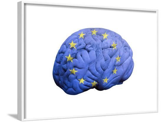 European Brain, Conceptual Artwork--Framed Photographic Print