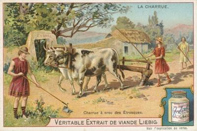 Etruscans Ploughing by European School