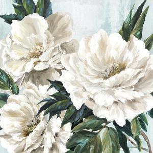 Freshly Bloomed II by Eva Watts