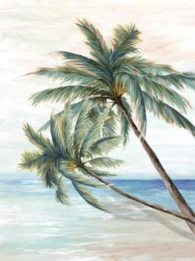 Hawaii Beach II by Eva Watts