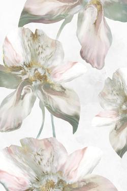 Silk Blush II by Eva Watts
