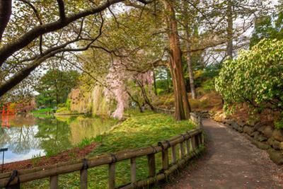 Botanic Garden Walkway by EvanTravels