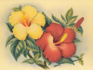 Hawaiian Hibiscus by Eve Hawaii