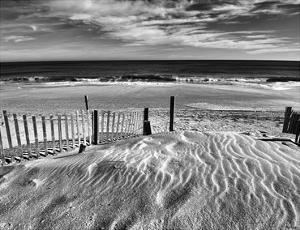 Pathway by Eve Turek
