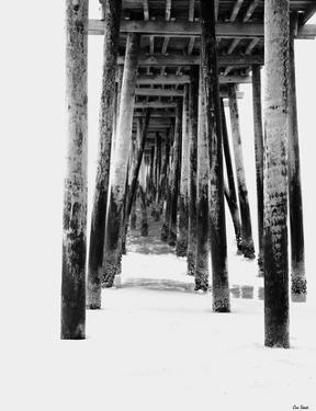 Rite of Passage by Eve Turek