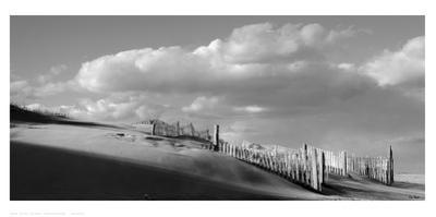 Sand Fences by Eve Turek