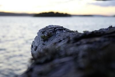 https://imgc.allpostersimages.com/img/posters/evening-mood-stora-le-lake-sweden_u-L-Q1EXSNX0.jpg?artPerspective=n