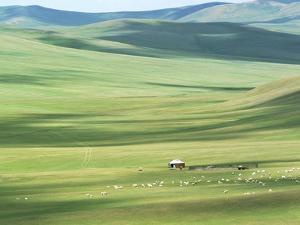 Evenk people's summer pasture, Old Barag Banner, Hulunbuir, Inner Mongolia Autonomous Region, China