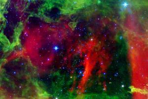 Every Rose has a Thorn Nebula Space