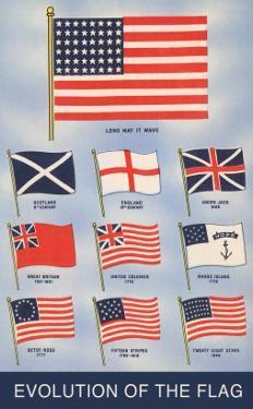 Evolution of the Flag