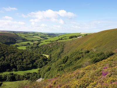 https://imgc.allpostersimages.com/img/posters/exmoor-from-county-gate-looking-towards-brendon-exmoor-national-park-somerset-england-uk_u-L-PFNHNV0.jpg?p=0