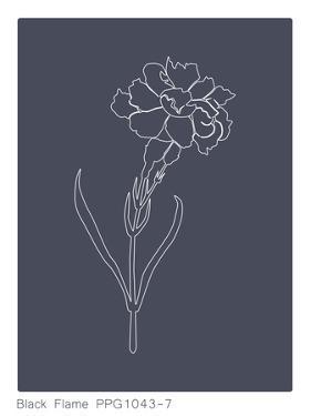 Black Flame Carnation by Explicit Design