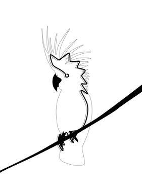 Cockatoo In Line by Explicit Design