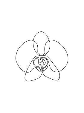 One Line Orchid by Explicit Design