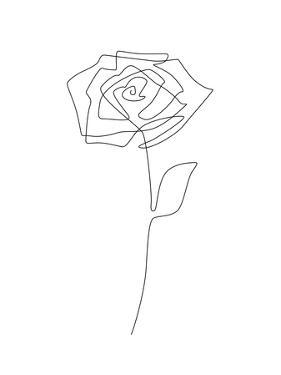 Single Rose by Explicit Design
