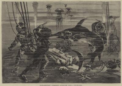 Extraordinary Submarine Adventure with a Sword-Fish