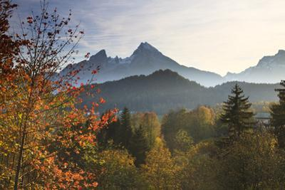 Forest and Watzmann in Autumn, Berchtesgaden National Park, Bavaria, Germany by F. Lukasseck