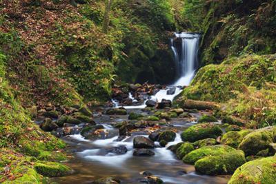 Geroldsau Waterfall in Autumn, Black Forest, Germany by F. Lukasseck