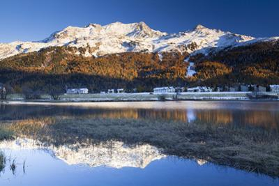Piz Corvatsch in Bernina Range with Sils Im Engadin Reflecting in Lake Sils, Engadin, Switzerland by F. Lukasseck